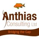 Anthias Consulting Ltd. logo