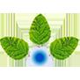 Anupam Rasayan India Ltd logo