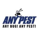 Any Pest Inc. logo