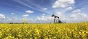 Apex Oilfield Services logo