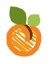 Apricot Culotte Inc. logo