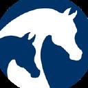 Arabian Horses logo icon
