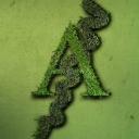 ARANEUS SRL - Web Agency logo