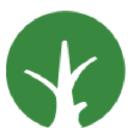 Arboles sin fronteras ONG logo