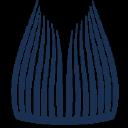ARGONAUTICA ENGENHARIA E PESQUISAS logo