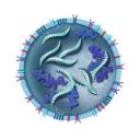Aruna Biomedical
