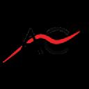 Ascent Consulting Inc logo
