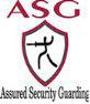 ASG Enterprises Limited logo