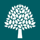 Ashmole and Co logo