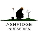 Ashridge Trees Limited logo
