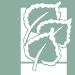 Aspen Valley Hospital logo icon