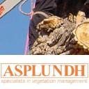 Asplundh (NZ) logo