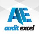 Audit Excel logo icon