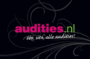 Audities.nl logo
