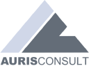AURIS-CONSULT Enterprise Solutions GmbH logo