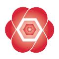 Austin Rose Associates logo