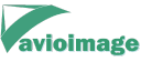 Avioimage Mapping Services logo