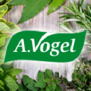 Vogel logo icon