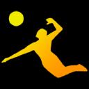 Avp Beach Volleyball logo icon
