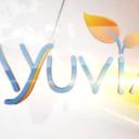 Ayuvia LLC logo