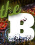 B Town Blog logo icon