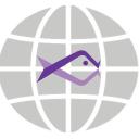 Babelfish Analytics logo icon