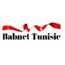 Babnet logo icon