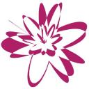 Bab Star jr. BV logo