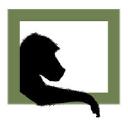 Babun Film logo