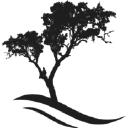 Backonpoint Holistic Medicine logo