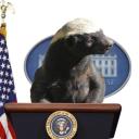 Badger Reps