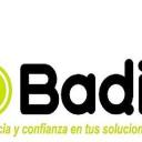 Badi Consultores logo