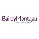 Bailey Montagu Executive Search logo