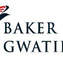 Baker Tilly Gwatidzo CA logo
