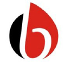 BaleFire Global LLC logo