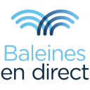 Baleines En Direct logo icon