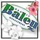 Baleu Realty Management logo