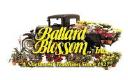 Ballard Blossom logo icon