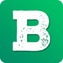 Ballcharts logo icon