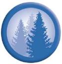 Balsam Technologies Inc. logo