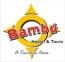 Bambu Hostel, David Panama logo