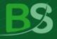 BankSystem Software Builder logo