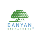 Banyan Biomarkers logo icon