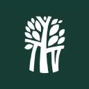 Banyan Tree logo icon