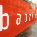 Baozi production logo