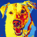Barking Lounge logo icon