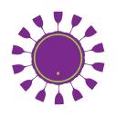 Barricas.com logo