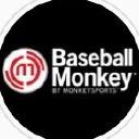 baseballmonkey.com logo icon