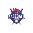 Baseball Rampage logo icon
