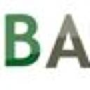 Basis-Africa Limited logo